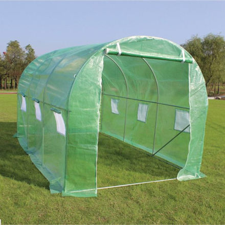 Picture of Sprouting Premium Polytunnel Greenhouse With Steel Frame