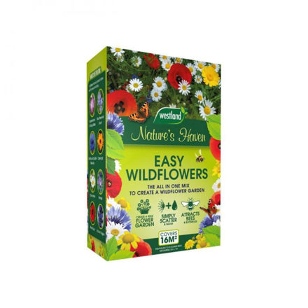 Picture of Easy Wildflower Seeds - 4kg
