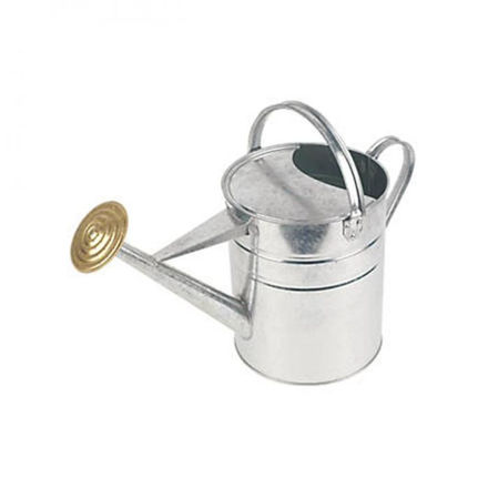 Picture of Galvanised Watering Can - 9ltr