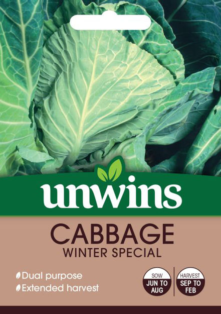 Picture of Unwins Cabbage Spring Greens