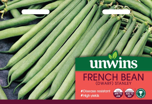 Picture of Unwins French Bean Dwarf Stanley