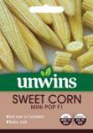 Picture of Unwins Sweet Corn Mini Pop