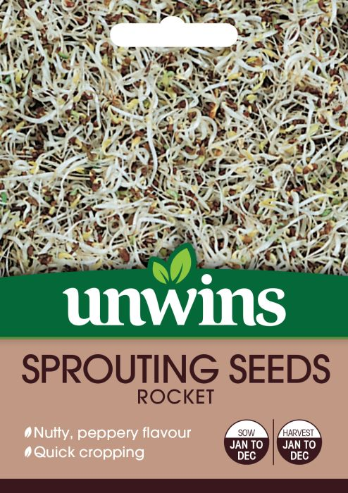 Picture of Unwins Rocket  Sprouting Seeds