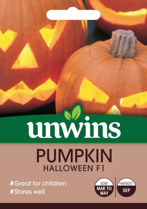Picture of Unwins Pumpkin Halloween F1