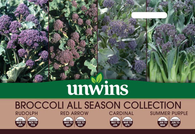 Picture of Unwins Broccoli All Season Collection