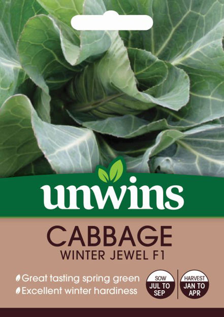 Picture of Unwins Cabbage Winter Jewel Seeds
