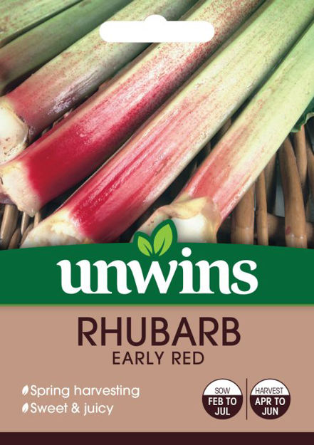 Picture of Unwins Rhubarb Early Red