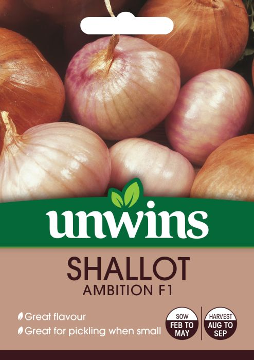 Picture of Unwins Shallot Ambition F1
