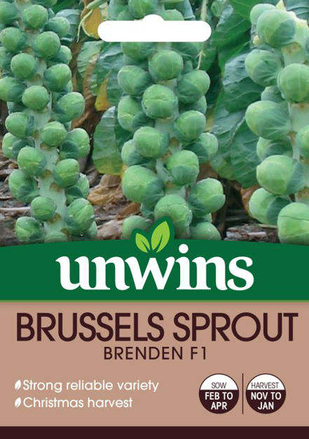 Picture of Unwins Brussels Sprout Brenden F1