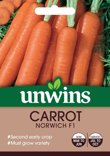 Picture of Unwins Carrot Norwich F1