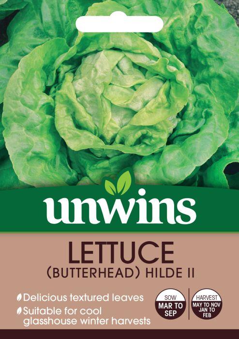 Picture of Unwins Lettuce Butterhead Hilde Ii