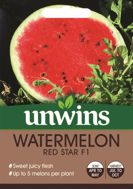 Picture of Unwins Watermelon Red Star F1