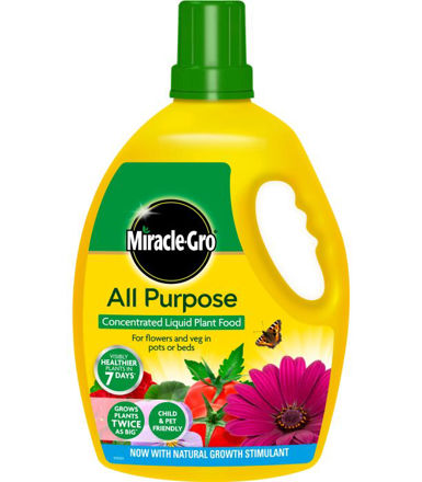Picture of 2.5l Miracle-Gro All Purpose Conc
