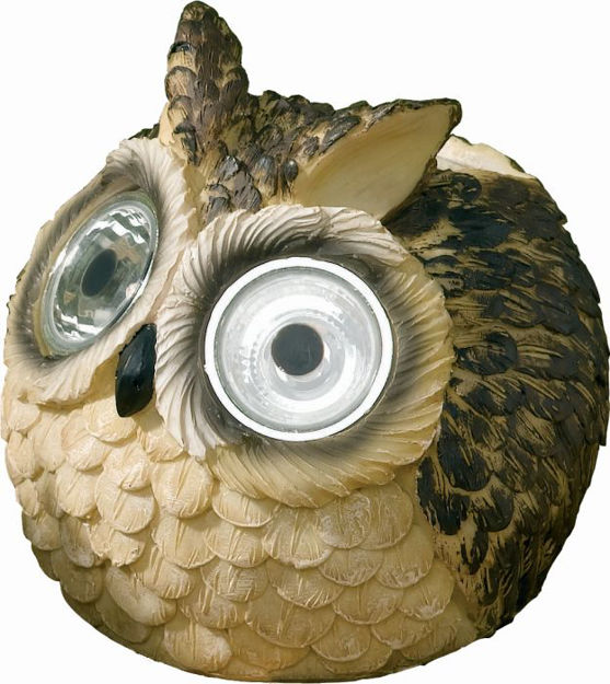 Picture of Owls Bright Eye Solar Lights