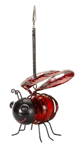 Picture of Bug Light Ladybird