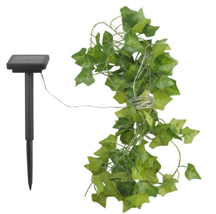 Picture of Ivy String Light 30 Led