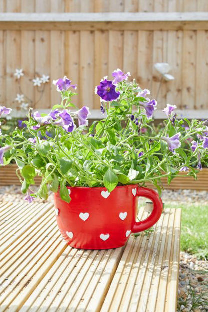 Picture of Teacup Heart Planter