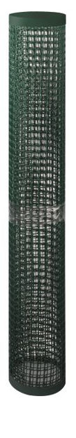 Picture of Climbing Plant & Fencing Mesh