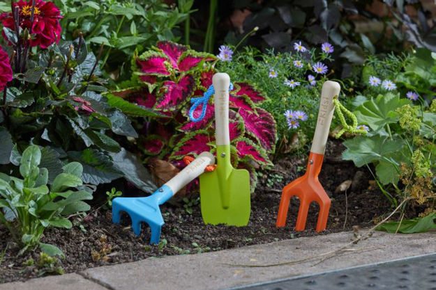 Picture of Fork, Trowel And Rake