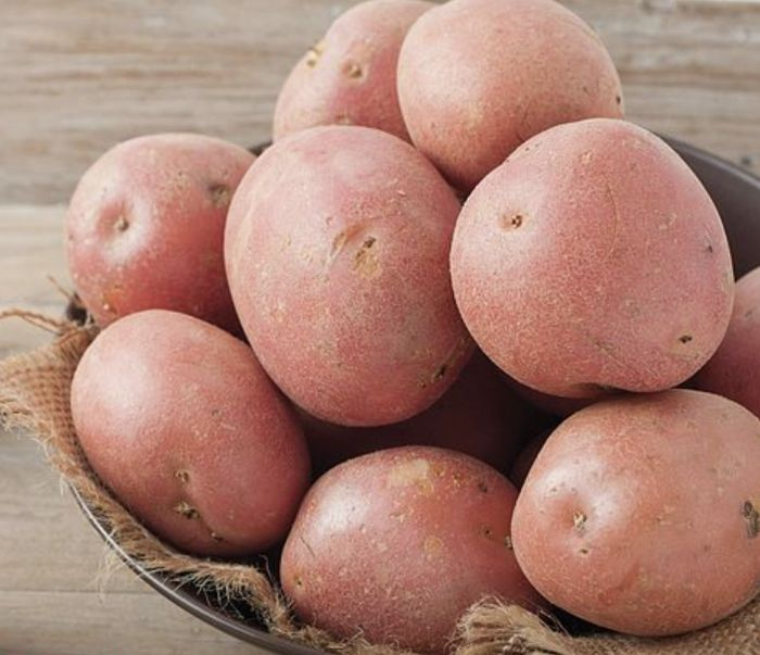 Picture of Dp033 2kg Setanta Potatoes Main Crop