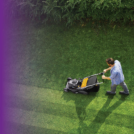 Picture for category Lawn & Gardening