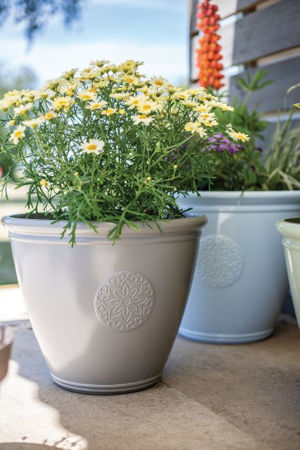 Picture for category Pots & Planters