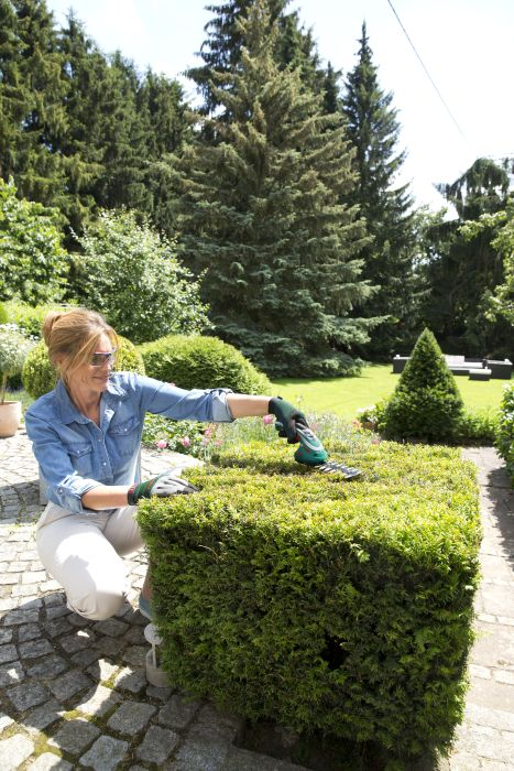 Picture of Bosch ISIO Cordless Shape & Edge Trimmer