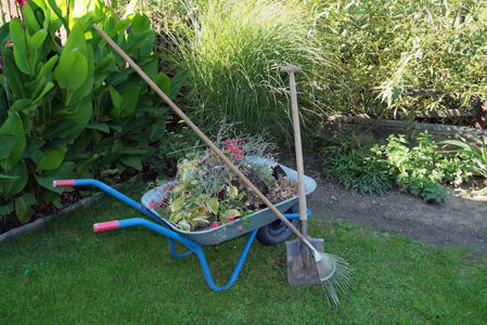 Picture for category Autumn Tidy Up