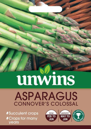 Picture of Unwins Asparagus Connover's Colossal