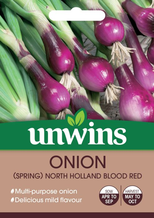Picture of Unwins Onion Spring Holland Blood Red