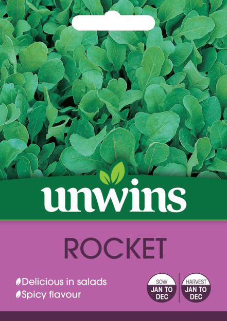 Picture of Unwins Herb Rocket