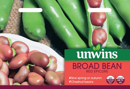 Picture of Unwins Broad Bean Red Epicure  Pea & Bean