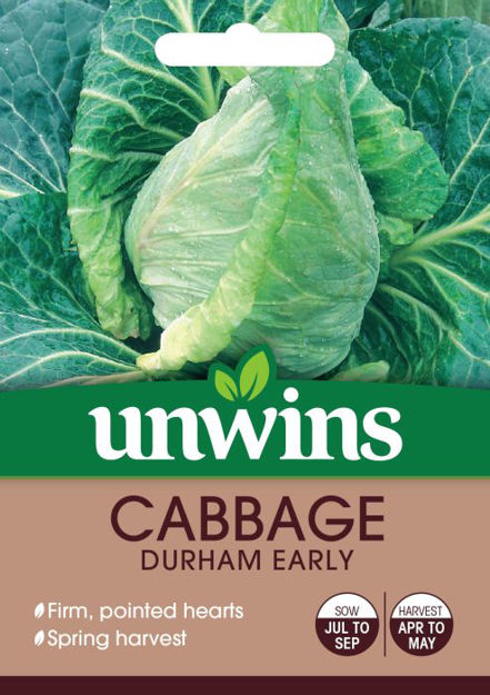 Picture of Unwins Cabbage Durham Early Vegetable