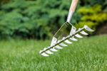 Picture of Stainless Steel Scarifying Rake