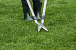 Picture of Lawn Shears