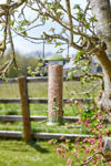 Picture of Twist Top Seed Feeder 20cm