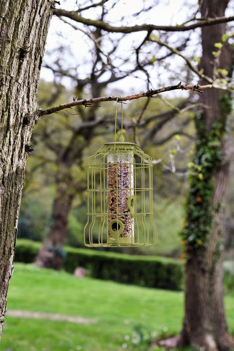 Picture of Squirrel Proof Seed Feeder