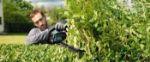Picture of Bosch Easy Hedge 18-45 18v Li Battery Hedgecutter 45cm