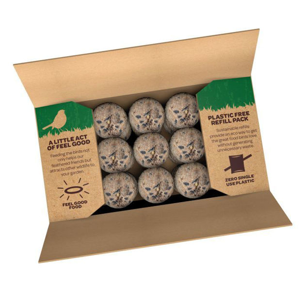 Picture of 60051245 ENERGY BALLS REFILL BOX 50 PK